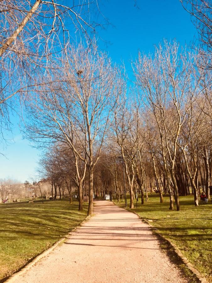 yürüyüş yolu